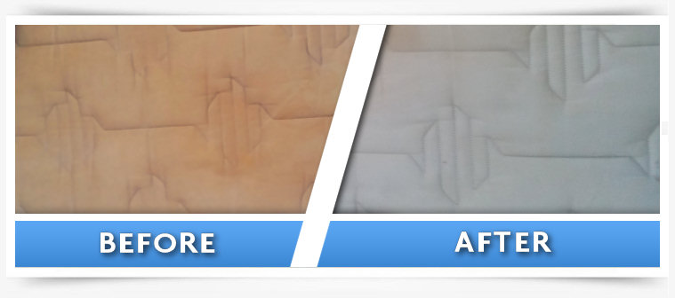 Chem Dry Centurion Before And After Cleaning Gallery